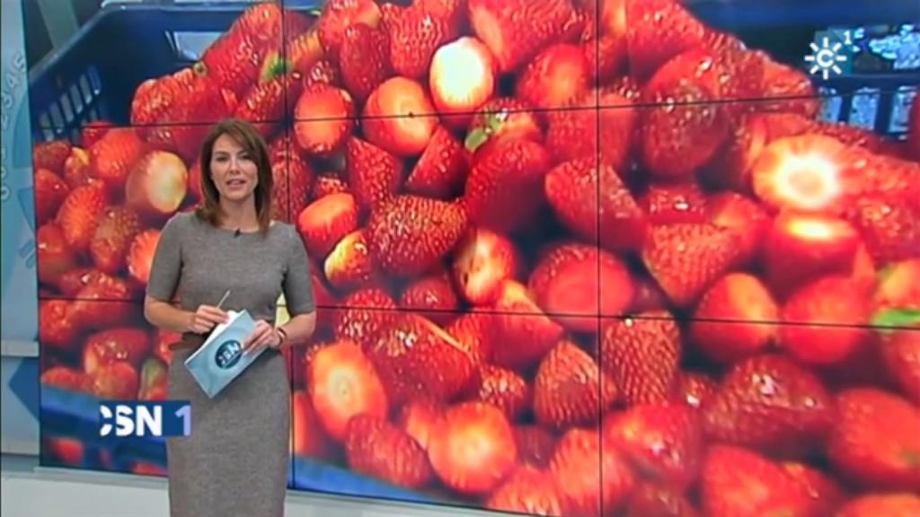 NOVEDAD | La primera línea de desrabado de fresas totalmente automática ya es una realidad